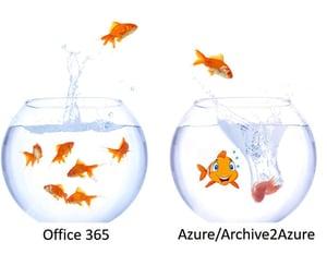 Blog06142018_Goldfish